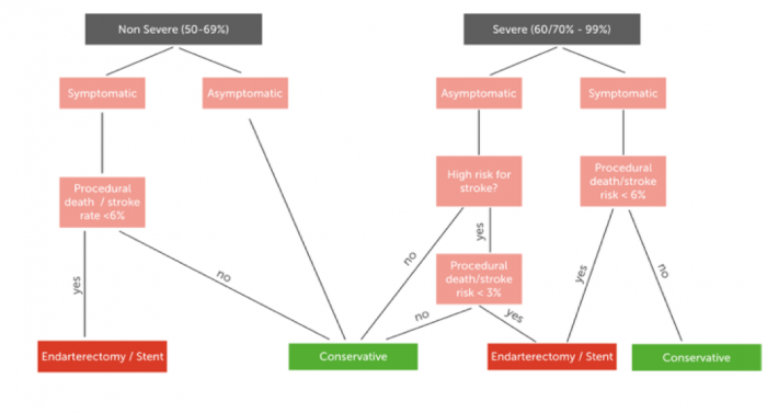 Flow chart depicting the indications for conservative therapy and carotid artery stenting