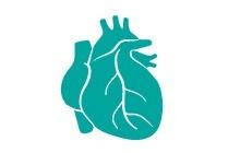 heart_0.jpg